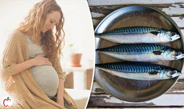 خوردن ماهی در دوران بارداری - سیوطب