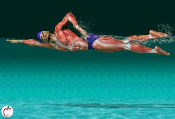 فواید شنا برای سلامتی - سیوطب