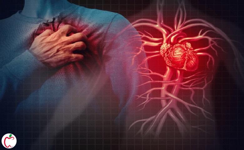 سیستم قلبی و عروقی در تغییرات بدن با افزایش سن