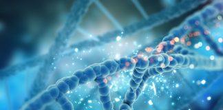 چطور بر اساس DNA رژيم غذايي بگيريم؟