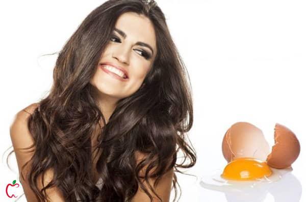تخم مرغ برای زیبایی مو - سیوطب