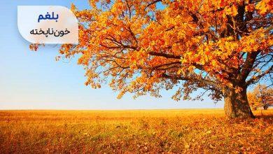 پاییز، نماد مزاج سرد و تر| سیوطب